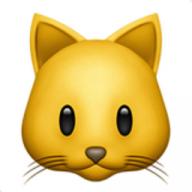 Catgold8